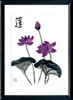 Sumi-e painting Lotus