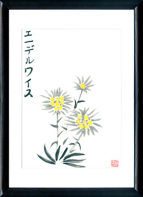 Sumi-e painting Edelweiss